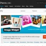 image_widget