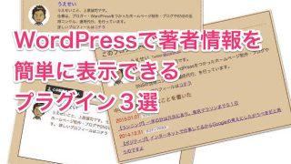 profile_WordPress