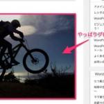 ブログ写真アップロード