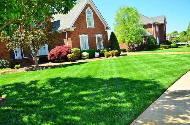隣の庭の芝は青い