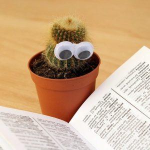 本を読んで勉強するサボテン