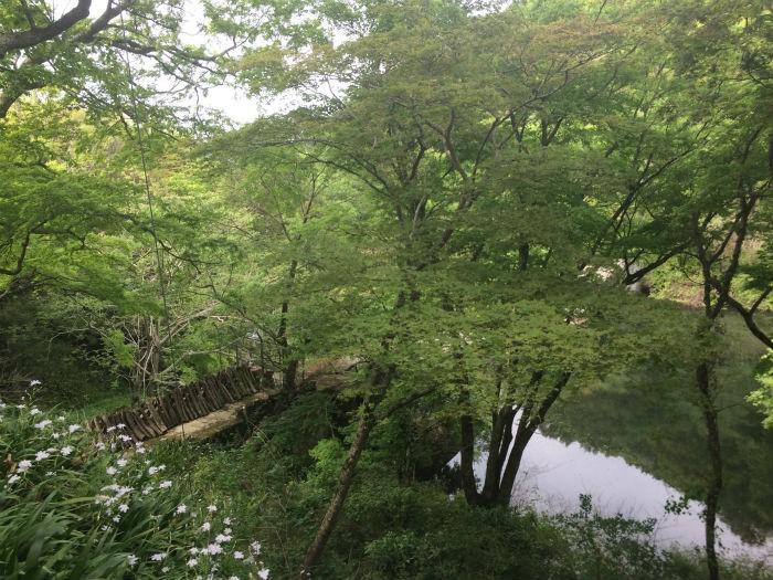 牛滝山の上から見る風景