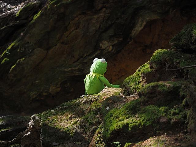 不安なカエル