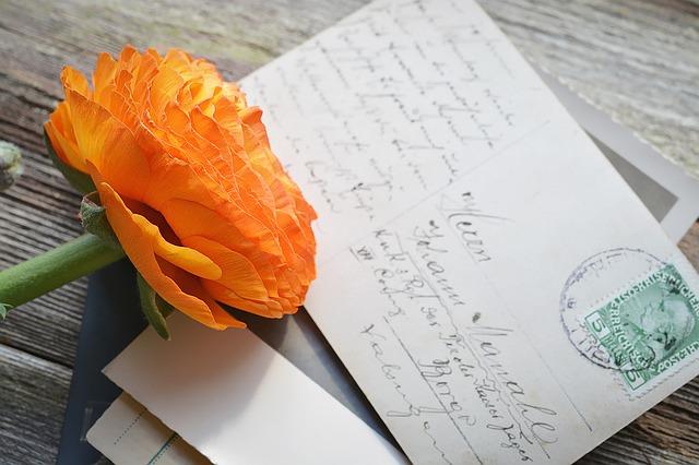 はがきとお花