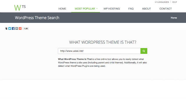 What_WordPress_Theme