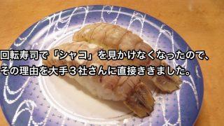 シャコ_アイキャッチ