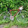 鉄分濃度マックス!「クロモリ」の魅力とタイプ別ロードバイクモデル25選   FRAME :